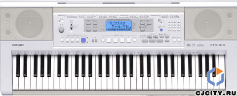 Синтезатор Casio CTK-810