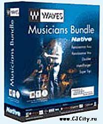 Waves musicians bundle
